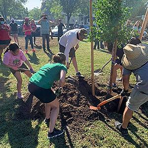 Adison Martinez, her parents, Mayor Mathew Serratto and Merced City School District Board President Birdi Olivarez-Kidwell plant the first of 12 new trees in Rahilly Park.