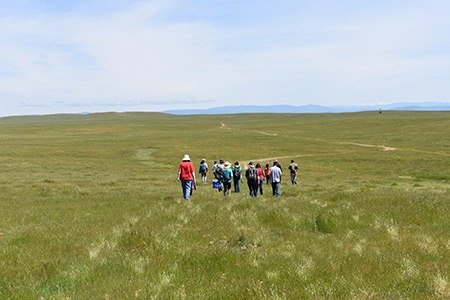 Citizen scientists head to vernal pool sites.