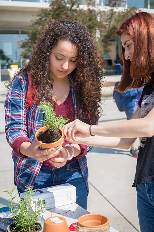 Students plant herbs at EcoFest.