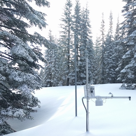 An electronic sensor device stands in a snowy forest opening surrounded by snow-covered pine trees.