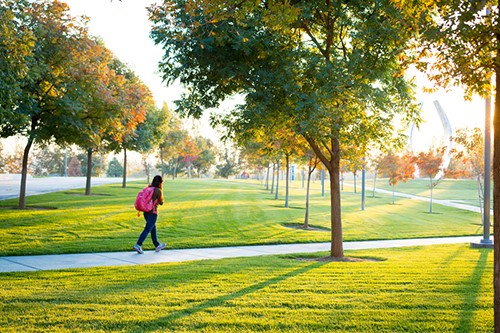 A new water-saving hydrogel will help campus lawns stay green this summer.