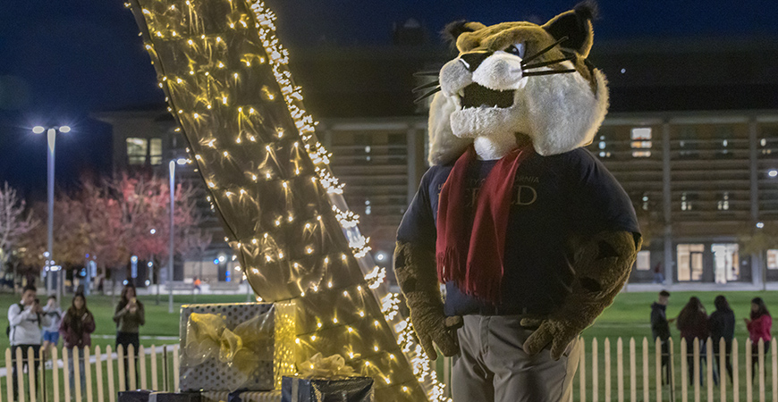 Rufus the Bobcat and the UC Merced campus community rung in the holiday season at the Beginnings lighting and food drive last week.