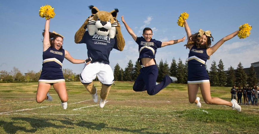 Rufus is the real-life iteration of the UC Merced bobcat.