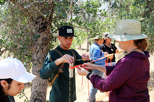 The students's mapping of the area will be used by local environmental science students and also serve as a basis for ongoing oak mortality research. Photo courtesy of TCOE.