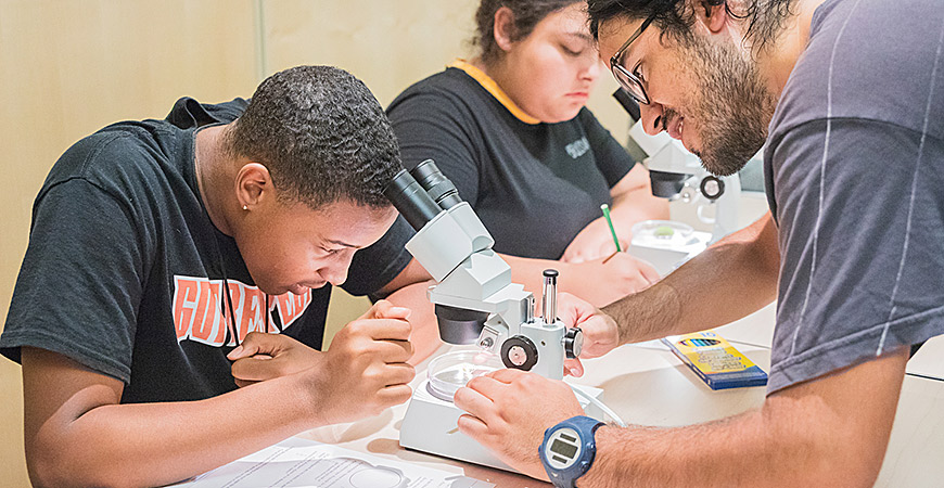 Three summer programs offer high school students the opportunity to spend time on a college campus and learn subjects ranging from mathematics and technology.